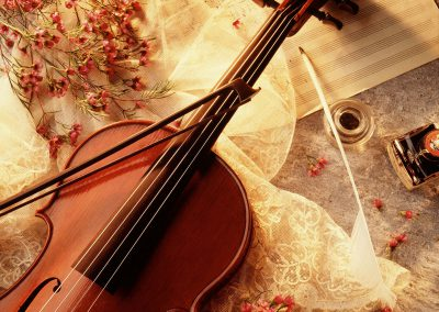 Violin2_2080px
