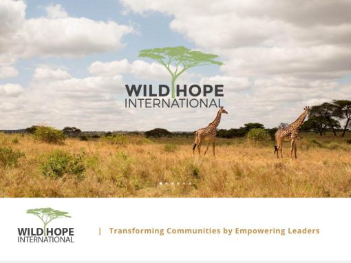 Wild Hope International